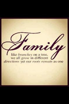 as the empty nest is approaching more families quotes family quotes ...