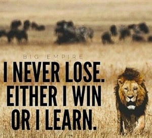 lion, lose, motivation, positive, quotes, sayings, staypositive, win ...