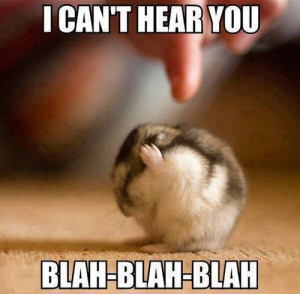 Can't Hear You - Funny pictures