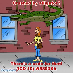 ... Medical Fields, Funnies Cartoon, Medical Codes, Medical Coder, Medical
