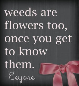 Weeds are flowers too!