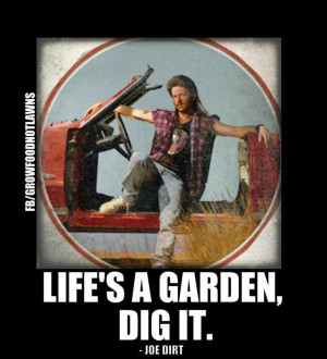 ... love him as Joe Dirt! So funny! He is also funny in Grown Ups! ;D