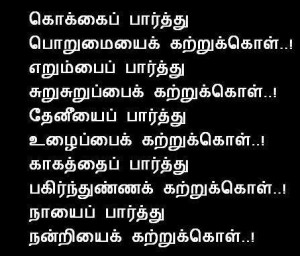 Quotes in Tamil Patience Quotes, Sharing Quotes, Gratitude Quotes,Work ...
