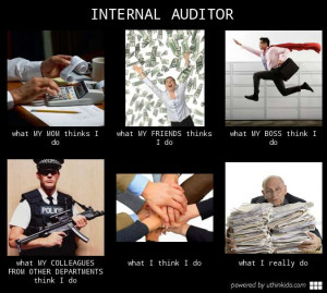 internal auditor what people think i do what i really do