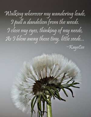 Dandelion Dreams- Fine Art And Poetry Poster By Kayecee Spain