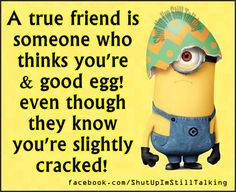 ... friendship quotes funny quote funny quotes humor minions minion quotes