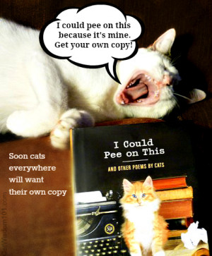 Could Pee On This – Cat Book Author Q & A & Giveaway