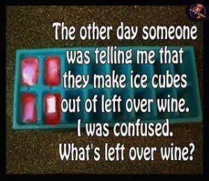Ice cubes out of left over wine