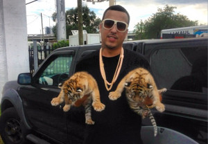 French Montana Gets High, Purchases Baby Tigers