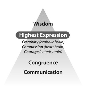 Wisdom, compassion, and courage are the three universally recognized ...