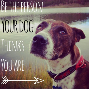 your dog thinks you are. Dog quote. This is a photo of my sweet dog ...