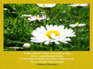Labels: Positive attitude quotes , positive quotes
