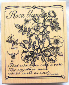 ... -ROSA-BLANC-rose-flower-Shakespeare-Quote-K-3134-NEW-Rubber-Stamp