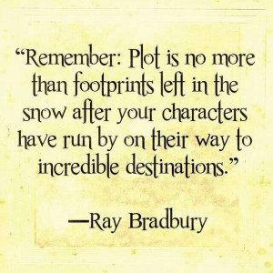remember: plot is no more than footprints left in the snow after you ...