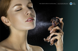 ... animal testing. Which side do you take? Pros and cons for this method