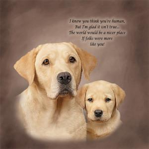 Golden Retriever Photos With Quotes