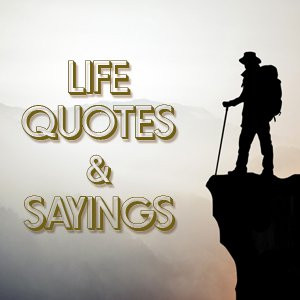 12+ Life Quotes And Sayings