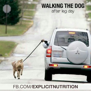 After Leg Day... Lol! #quotes #doglovers #exercises #workout #wod