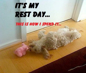 Happy Sunday Aka Rest Day