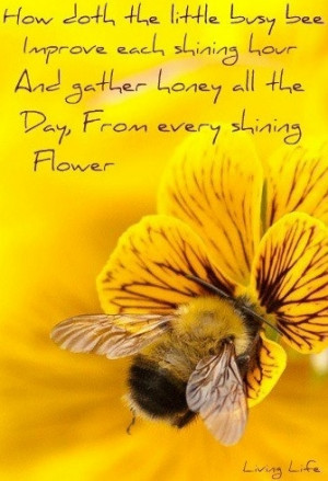 Busy Bee Quote
