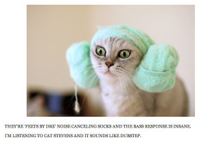 Cute Animals With Captions To Make You Smile (15 Pics)