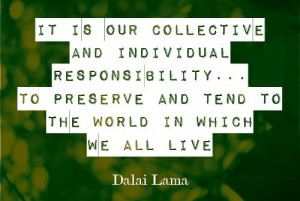 It is our collective and individual responsibility...to preserve and ...