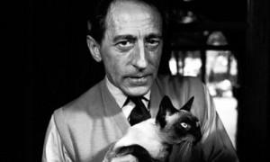 ... de ménage to his cat karoun whom he described as the king of cats