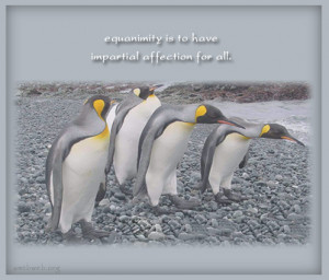 Equanimity quotes – Equanimity is to have impartial affection for ...