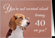 Happy 40th birthday, worried beagle card - Product #1149596