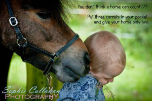 http://www.equine-world.co.uk/horse-forums/showthread.php?t=35935)