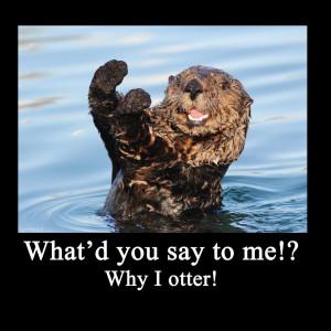 Sea Otter Meme by ArtbyjoelK