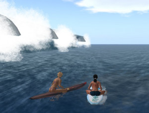 Funny Surfing (60)