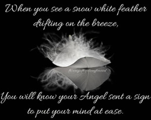 When you see a snow white feather...