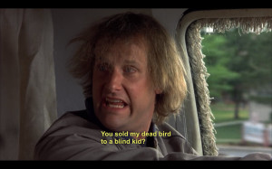 Dumb And Dumber Quotes Tumblr