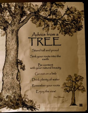 ... trees is an old wives tale but curiously enough the old wives hold by