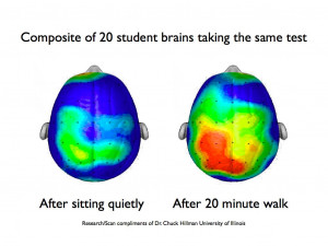 Brain Boosting Benefits of Exercise
