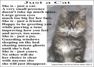 Just a Cat - original cat poetry and art by Patricia Walter