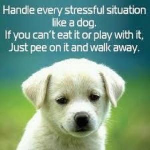 good life motto