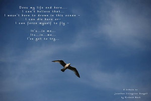 jonathan+livingston+seagull+quotes | Does-my-life-end-here | Flickr ...
