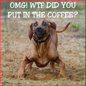 Omg wtf did you put in the coffee