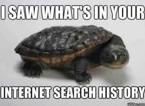 Funny Turtle Memes