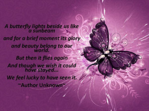 Butterflies, Butterfly quotes, Infant loss: Grief, Butterflies ...