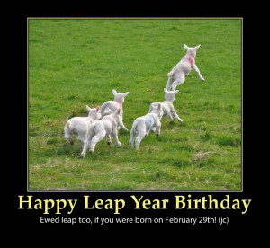 happy birthday leap year funny poster