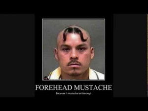 download now Its about Wtf Forehead Funny Pictures Popscreen Picture