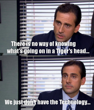 The Office – TIger Technology
