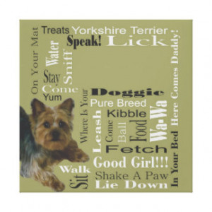 Yorkshire Terrier Gallery Wrap Canvas