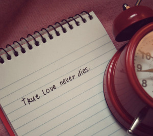 love, message, photography, text, true love never dies