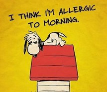 Sleepy Quotes Quote, morning, snoopy