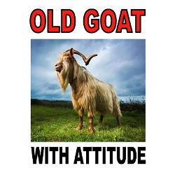 old_goat_greeting_cards.jpg?height=250&width=250&padToSquare=true