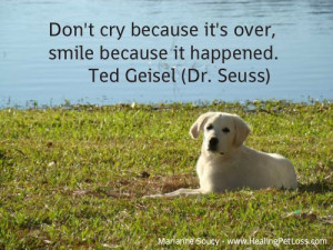 Pet Loss Quote Healingpetloss